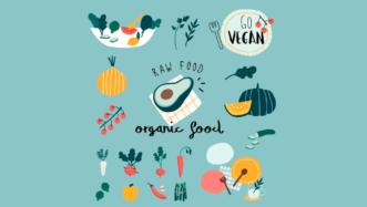 veganism lesson plan