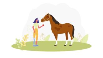 horse idioms